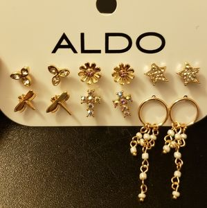 Aldo Earrings set
